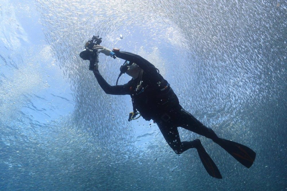 My friend, Rafael, surround by millions of bait fish and pointing his own camera.