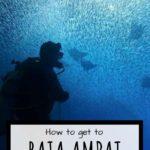 raja ampat directions pinterest