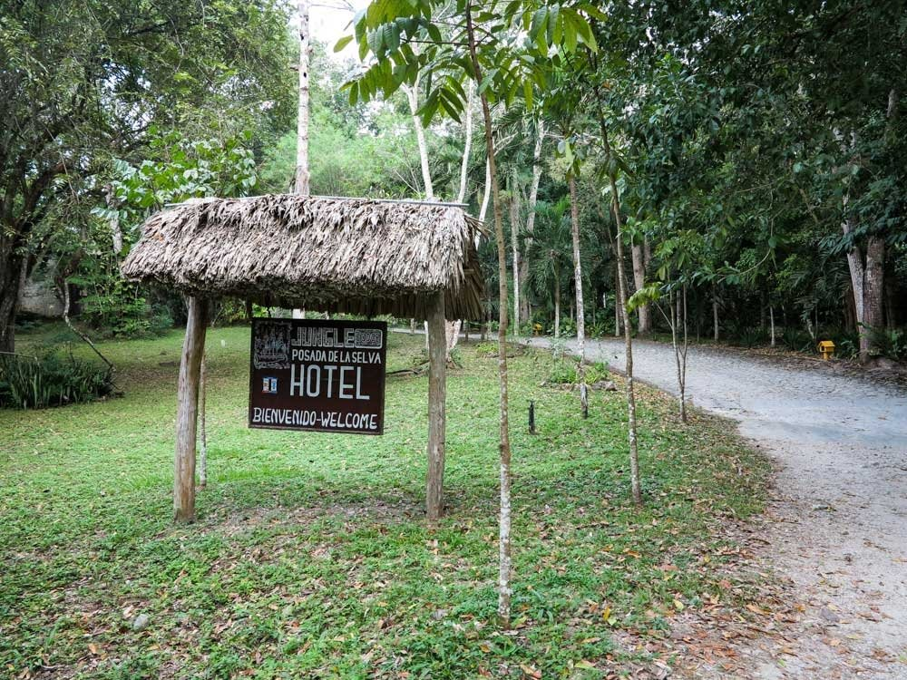The Entrance to the Jungle Lodge Hotel
