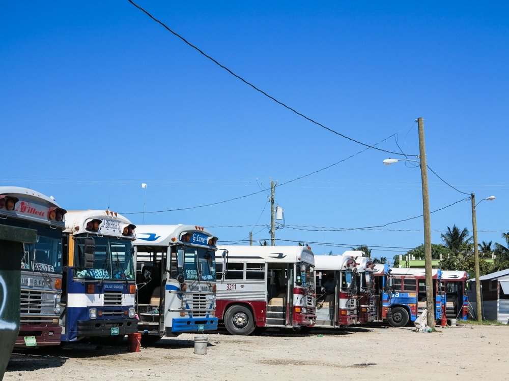 Belize City to Tikal - line of buses