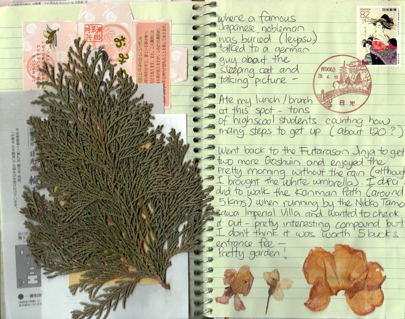 local fauna - leaves and small branches in my travel journal