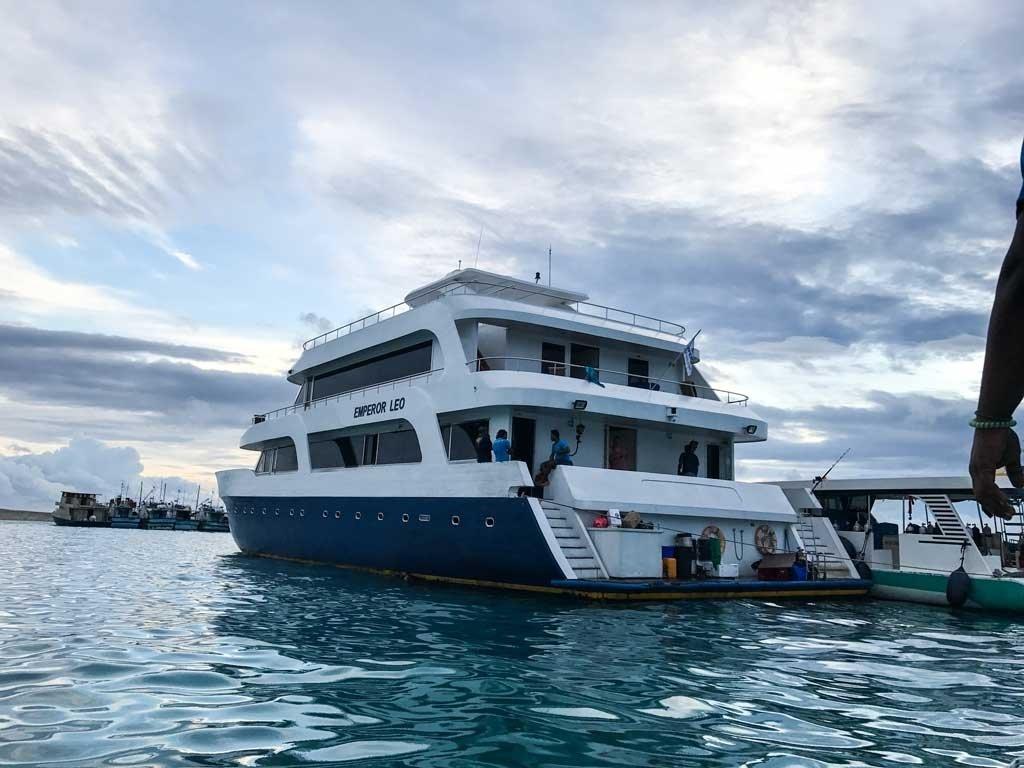 The Emperor Leo in the Maldives
