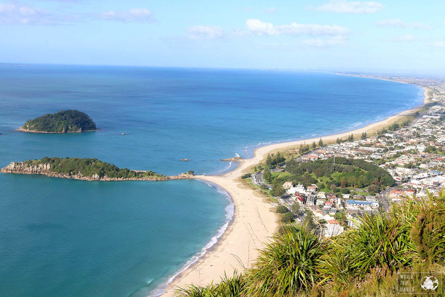 Mount Maunganui auckland day trips