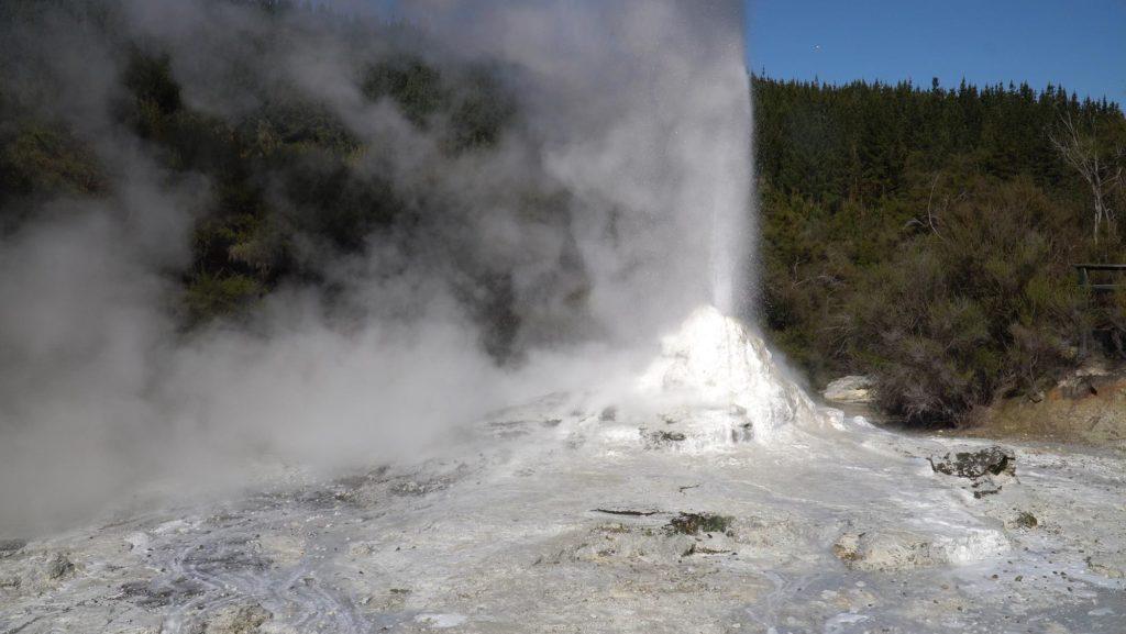 Lady Knox Geyser erupting