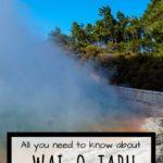 Wai-o-tapu pin with steaming champagne pool