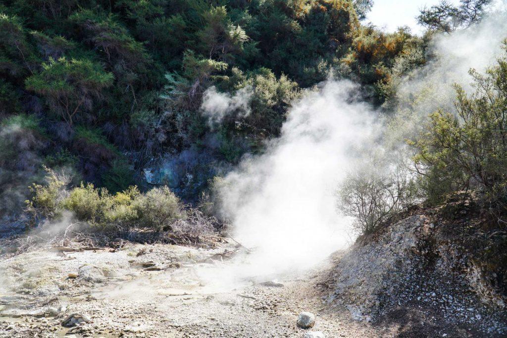 boiling mud pool at waiotapu thermal wonderland