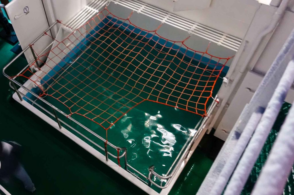 plunge pool on the Akademik Ioffe
