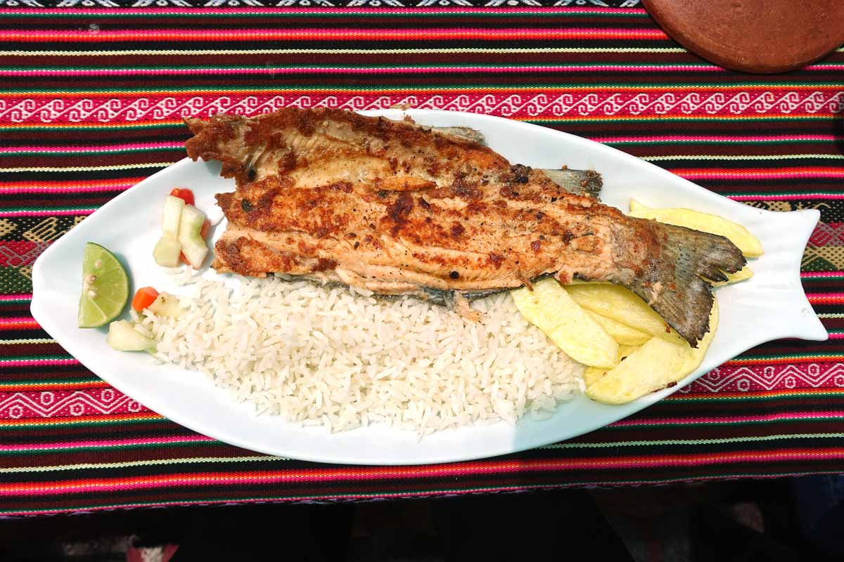 Fried trout on a trout shaped plate with white rice and french fries.