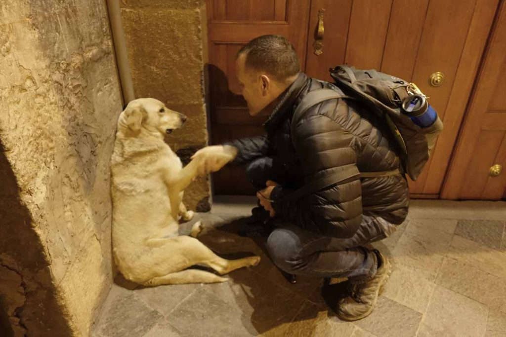 Michael shaking hands/paws with a Labrador retriever in Cusco.