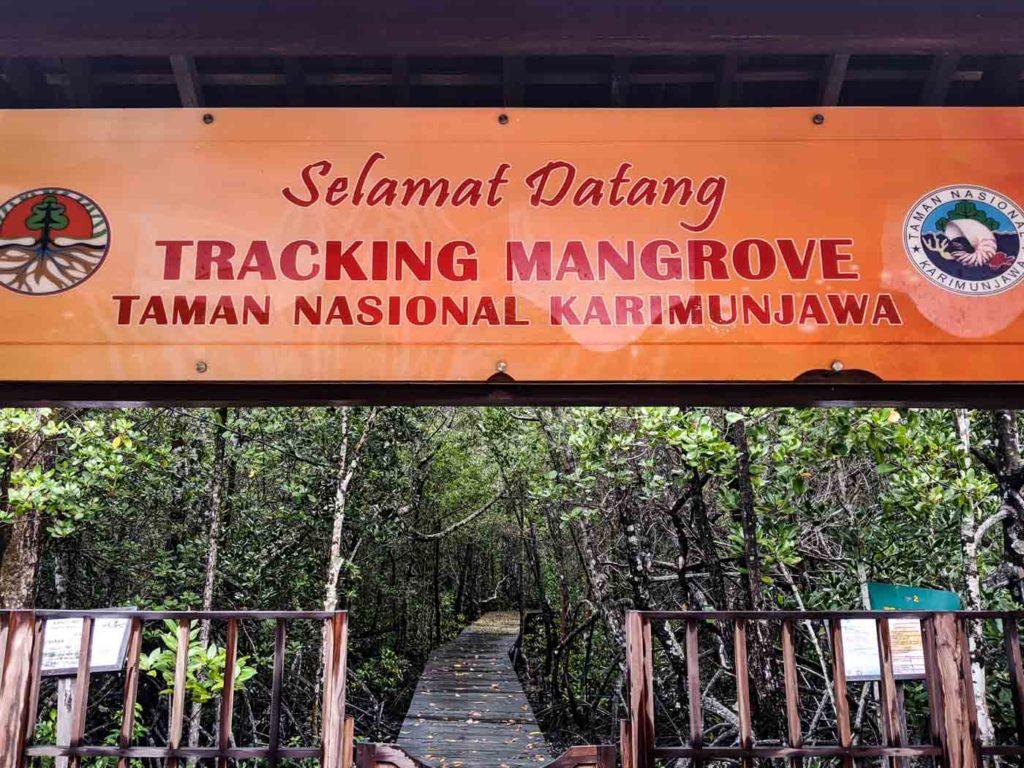 Entrance to the Karimunjawa mangrove forest. It says  Selamat Datang  Tracking Mangrove Taman Nasional Karimunjawa  It means Welcome to the Tracking Mangrove in Karimunjawa National Park