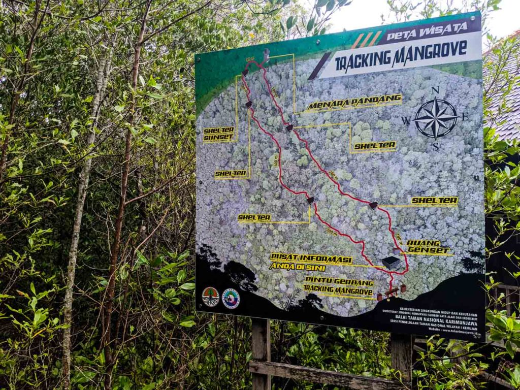 Map of the Karimunjawa mangrove forest trails on a large sign.