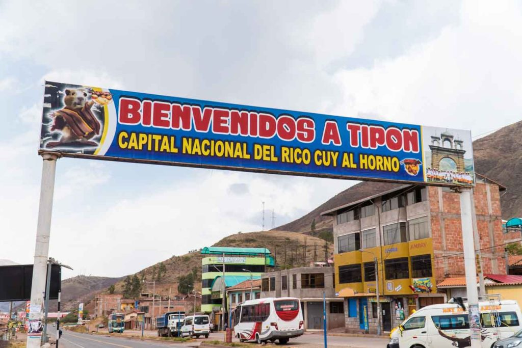 A sign over the highway through Tipon that reads Bienvenidos a Tipon: Capital Nacional Del Rico Cuy Al Horno. The sign has a cartoon Guinea Pig holding a roasted member of its family on a platter.