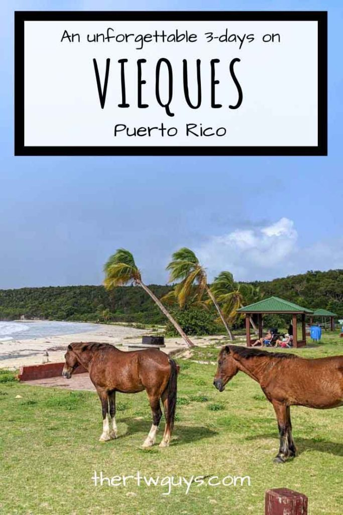Vieques 3-day itinerary pinterest image with a beach and two horses in the foreground.