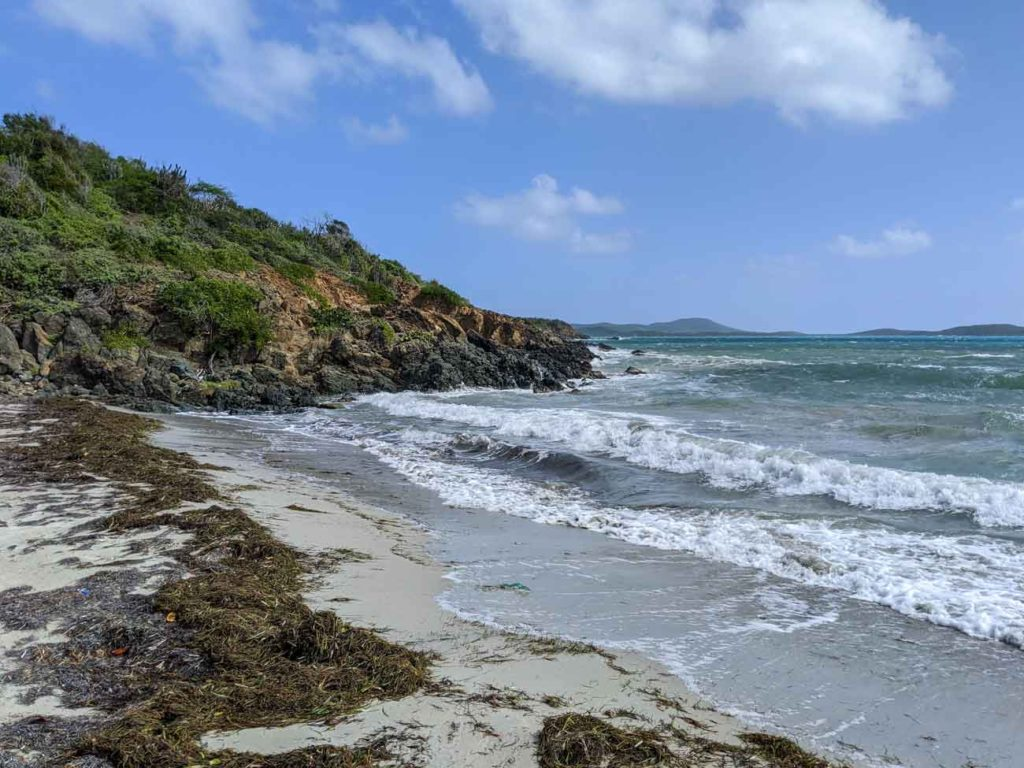 Escondida beach in Vieques. Not much beach area available with lots of seaweed on the sand.