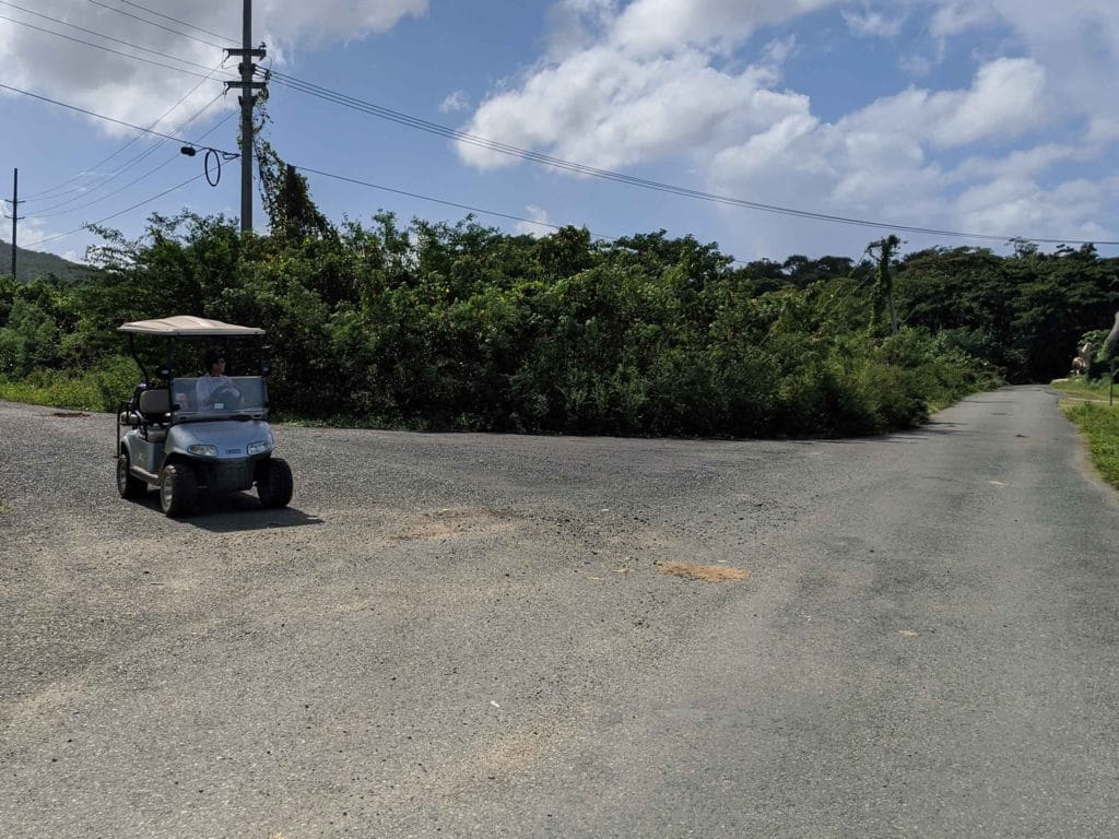 Halef in our golf cart in Vieques
